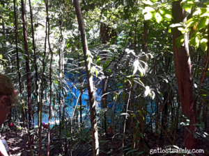 Telaga Biru Samares di Antara Pepohonan Hutan Tropis