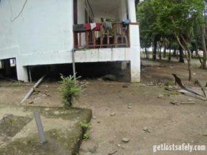 Komodo under house