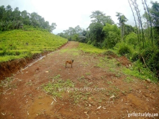 Road to Cunca Rami