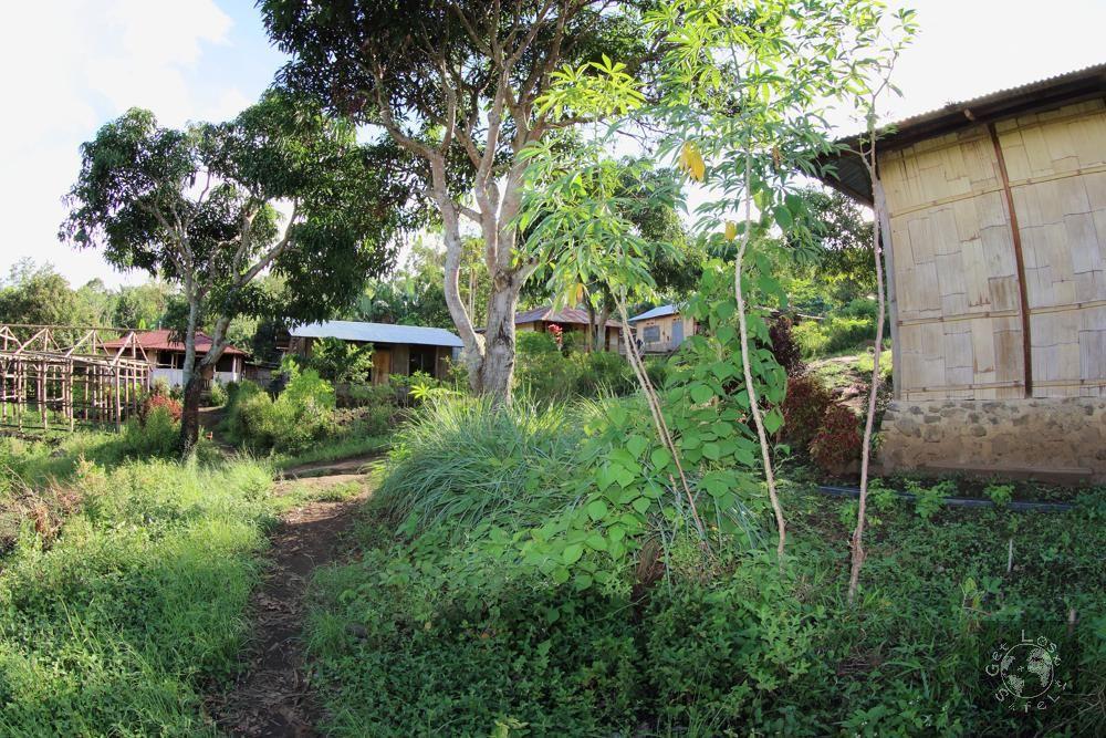 Dekat Kampung Moni