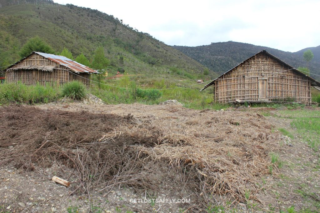 Organic home garden and rumah kaki seribu in Arfak Mountains